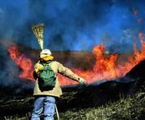 野焼きボランティア活動の様子